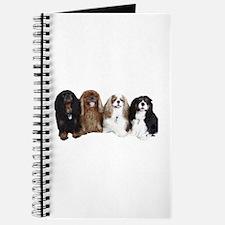 4Cavaliers Journal