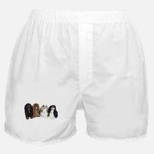 4Cavaliers Boxer Shorts
