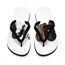 4Cavaliers Flip Flops