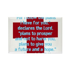 Jeremiah 29:11 Rectangle Magnet (10 pack)