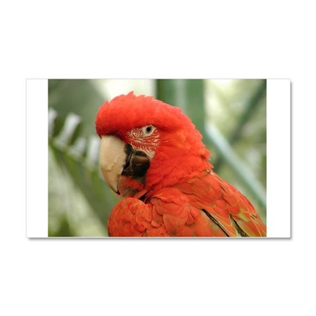 Red Parrot Car Magnet 20 x 12