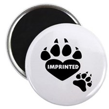 Imprinted Magnet