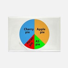 AS Pieces of pie chart Rectangle Magnet (10 pack)