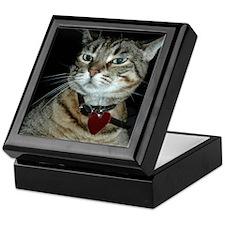 Gray Brown Kitty Keepsake Box