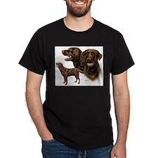 Choc Lab Multi T-Shirt