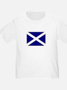 Flag of Scotland T