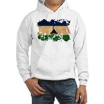 Lesotho Flag Hooded Sweatshirt