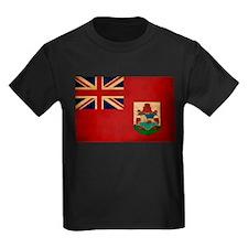 Bermuda Flag T