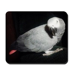 Gretchen's African Grey Mousepad