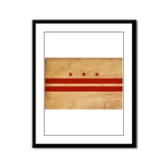 District of Columbia Flag Framed Panel Print