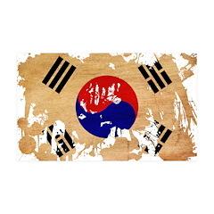 South Korea Flag 38.5 x 24.5 Wall Peel