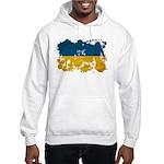 Ukraine Flag Hooded Sweatshirt