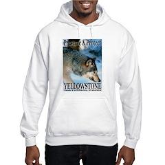 Preserve & Protect YNP Hooded Sweatshirt