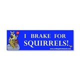 "I brake for squirrels 3"" x 10"""