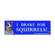 I Brake For Squirrels Car Magnet 10 x 3
