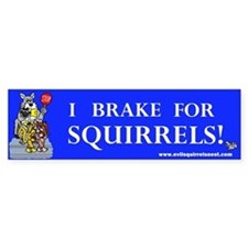 I Brake For Squirrels Stickers