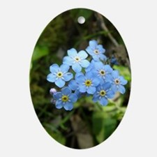 Forget-Me-Not #01 Ornament (Oval)