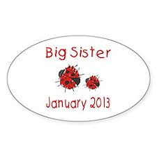 Big Sister Ladybug 0113 Decal