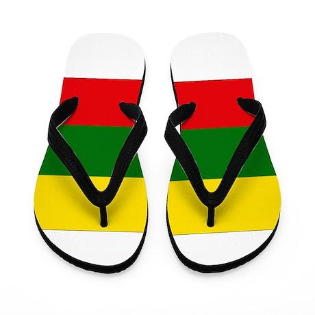 Lithuania Flag Flip Flops