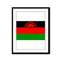 Malawi Flag Framed Panel Print