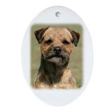 Border Terrier 9Y325D-038 Ornament (Oval)
