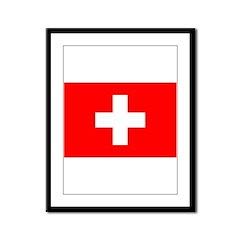 Switzerland Flag Framed Panel Print