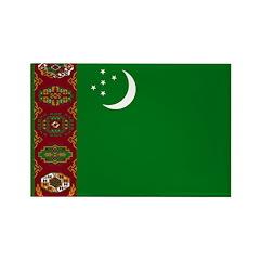 Turkmenistan Flag Rectangle Magnet (100 pack)