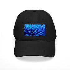 Blue Chrysanthemum flower Baseball Hat