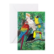 Tropical Birds Greeting Cards (Pk of 20)