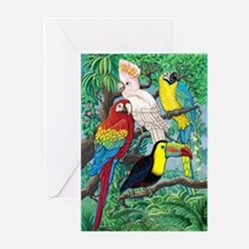 Tropical Birds Greeting Cards (Pk of 10)