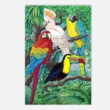 Tropical Birds Postcards (Package of 8)