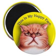 Happy Face Moods Magnet