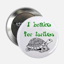 "Turtles - 2.25"" Button"