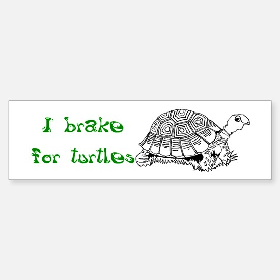 Turtles - Sticker (Bumper)