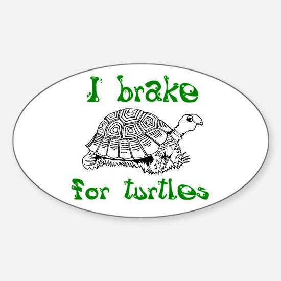 Turtles - Sticker (Oval)