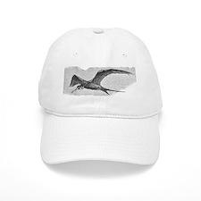 Tern at Sea Baseball Cap