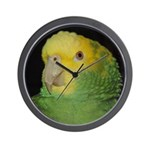 Wasabi/ Double Yellow-headed Wall Clock