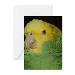 Wasabi/ Double Yellow-headed Greeting Cards (Pk of