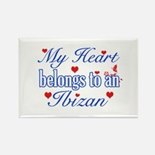 Ibizan Hound Dog Designs Rectangle Magnet (100 pac