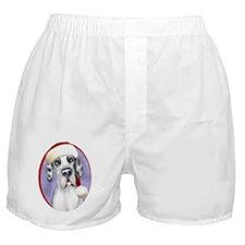 Santa Dane Harle UC Boxer Shorts