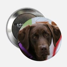 Jul Lab of the Month Button