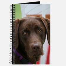 Jul Lab of the Month Journal