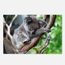 Sleeping Koala 2 Postcards (Package of 8)