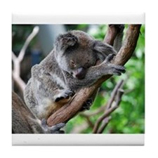 Sleeping Koala 2 Tile Coaster
