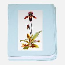 Cymbidium Orchid baby blanket