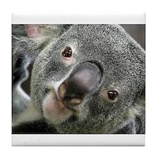 Koala Face 4 Tile Coaster