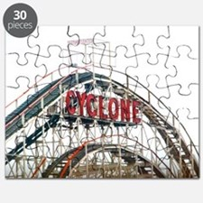 Coney Island: Cyclone Puzzle