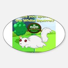 Cute White squirrel Decal