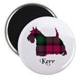 Terrier - Kerr Magnet