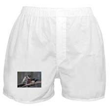 Woodduck and Wood Boxer Shorts